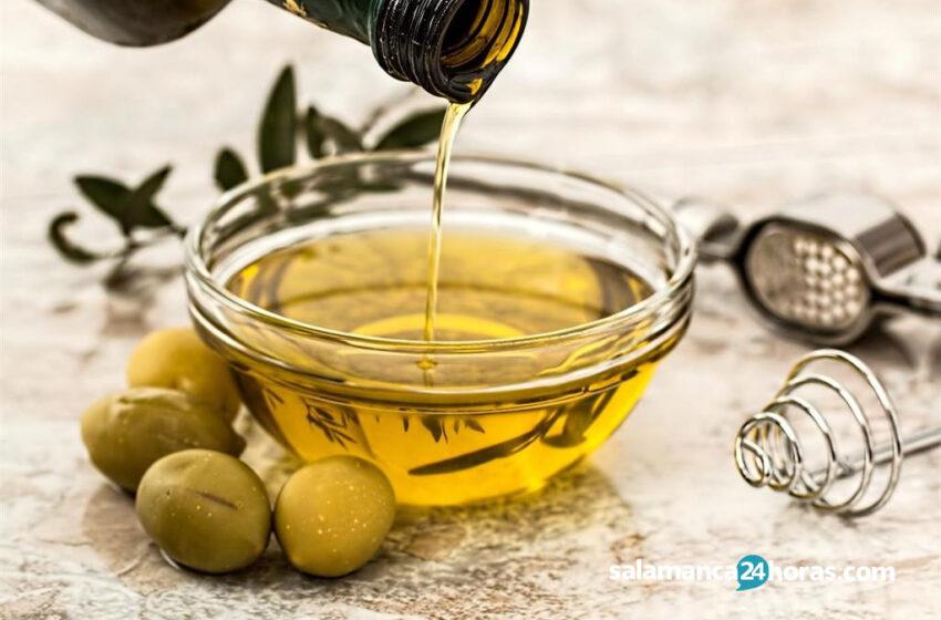 ¿Cuál es el aceite más sano para freír?