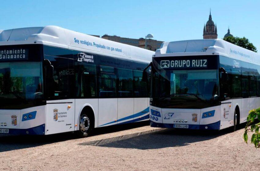 De esta manera el autobús urbano está atento a las necesidades de los viajeros