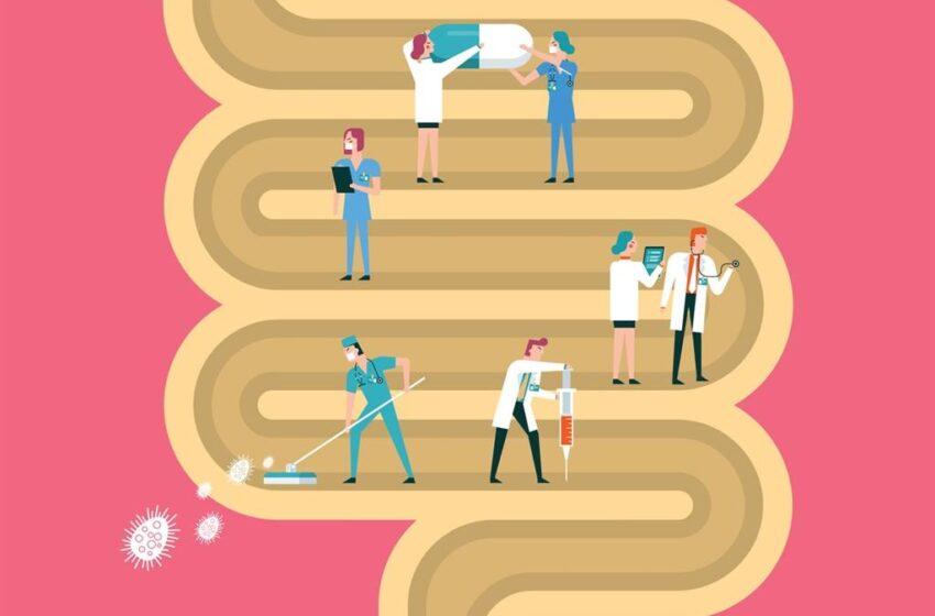 Breve guía sobre la microbiota: cómo cuidarla y su relación con la COVID-19