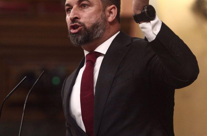 Abascal muestra un adoquín en la tribuna del Congreso y culpa a Marlaska y Unidas Podemos de la violencia contra Vox