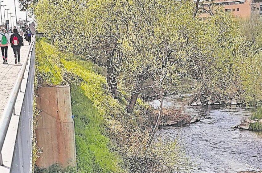 Un paseo fluvial será la nueva imagen de la entrada de Santa Marta