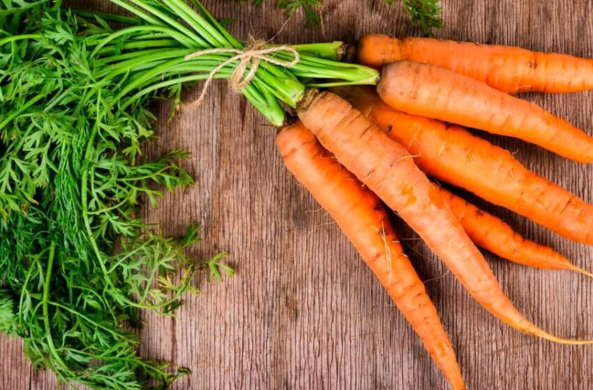 El alimento ideal para reducir el colesterol y perder peso de forma saludable