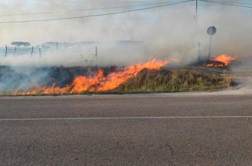 Movilización de los bomberos por un incendio en Pedraza de Alba: la causa podría haber sido una colilla