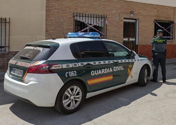Un detenido en la localidad segoviana de Cantalejo y otro investigado por grabar la escena y difundir el vídeo por redes sociales