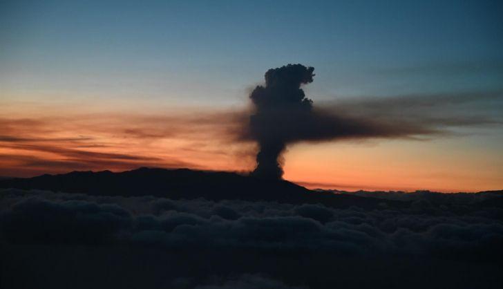 Prevén culminar este jueves el realojo de los evacuados afectados por el volcán Cumbre Vieja en complejos turísticos
